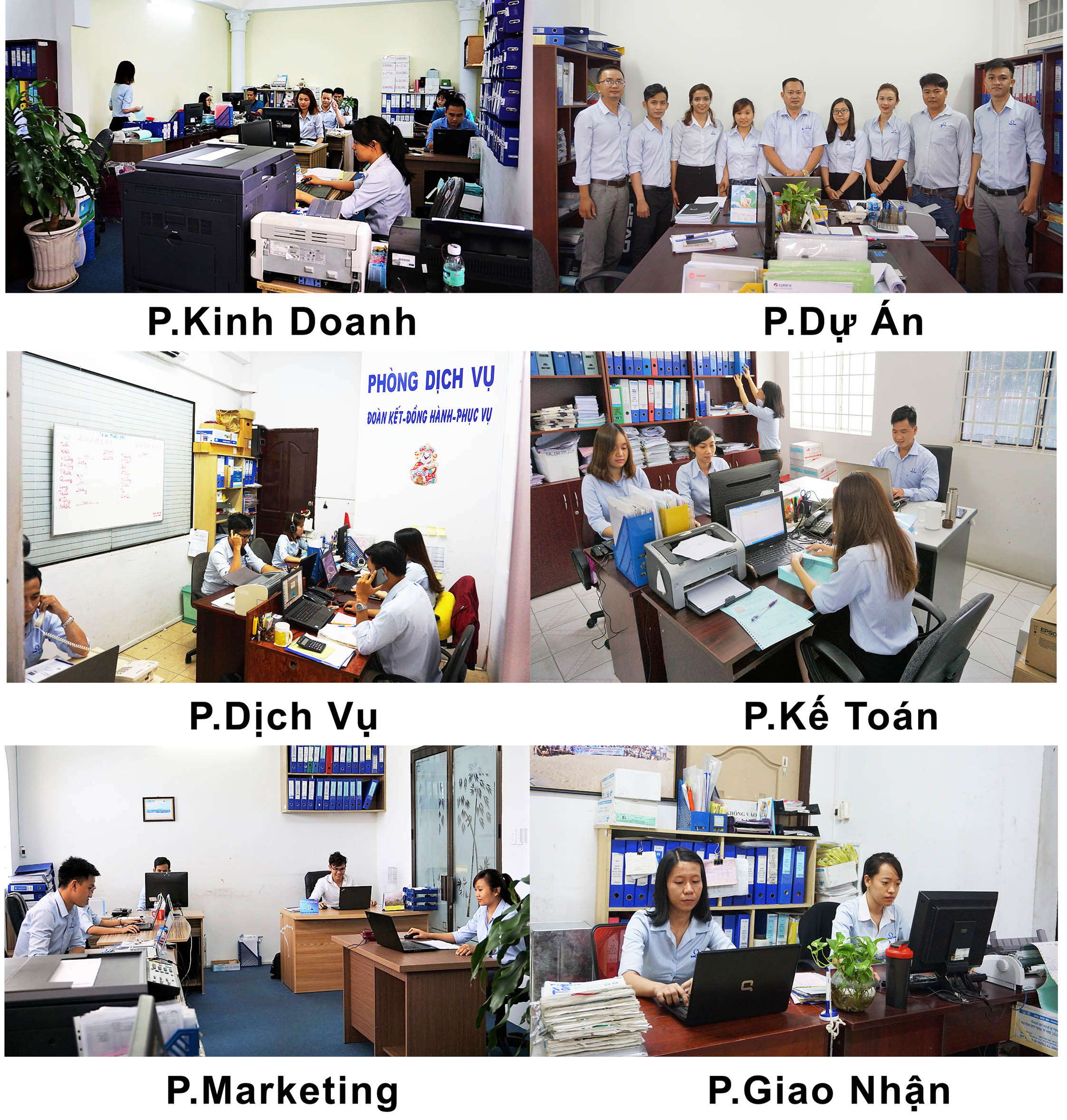 Đội ngũ nhân sự văn phòng Điện Máy Đông SaPa